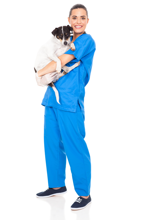 pronto-soccorso-veterinario